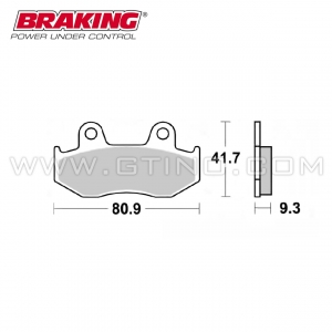 "Plaquette BRAKING ""Sintered"""